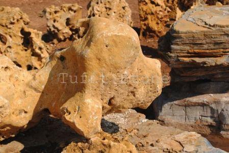 Phoca Thumb L Dsc 0673